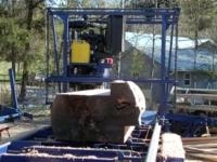 D&L Twin Saw Cutting Log